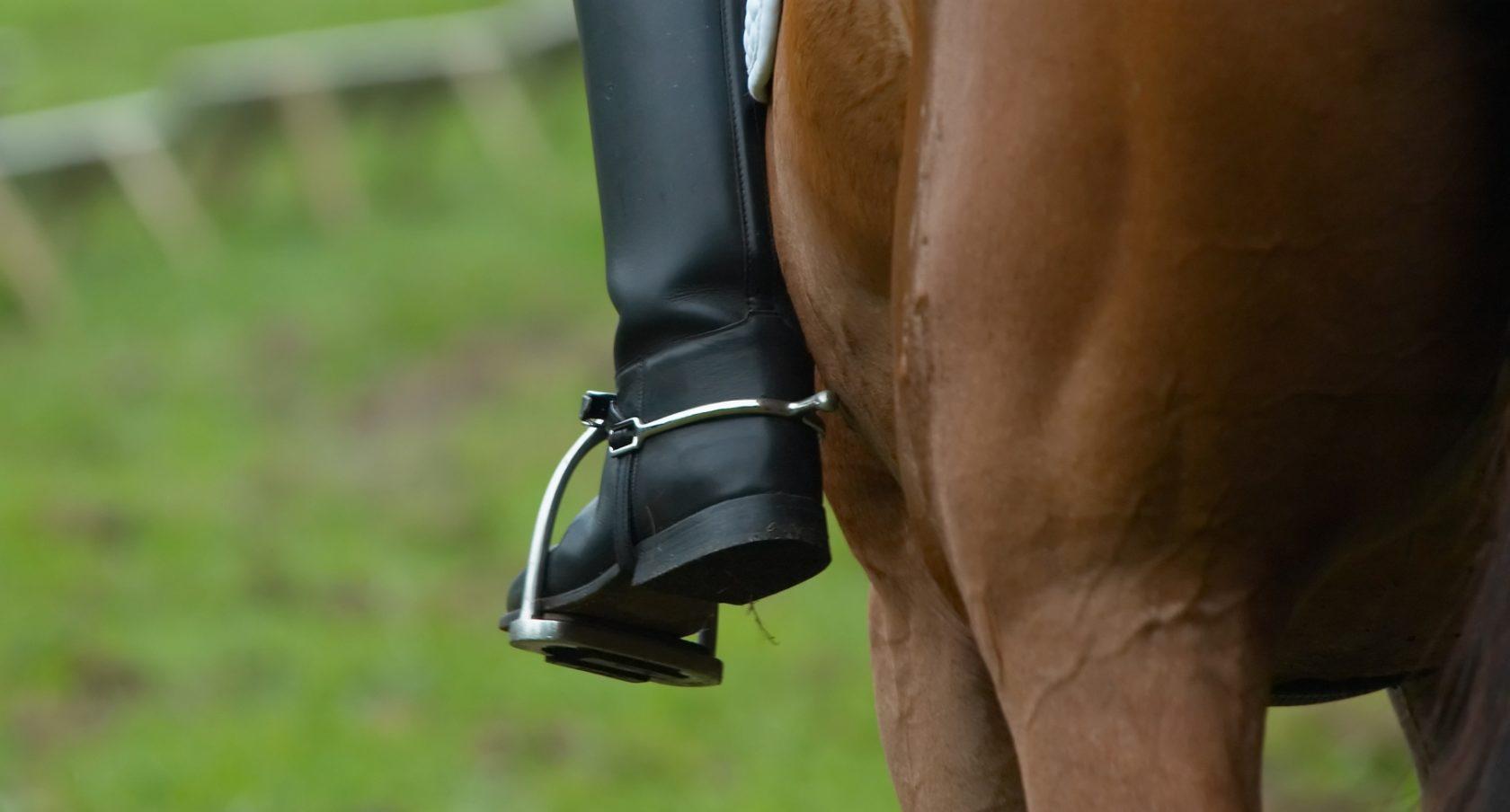 Uppblåsbar säkerhetsväst häst